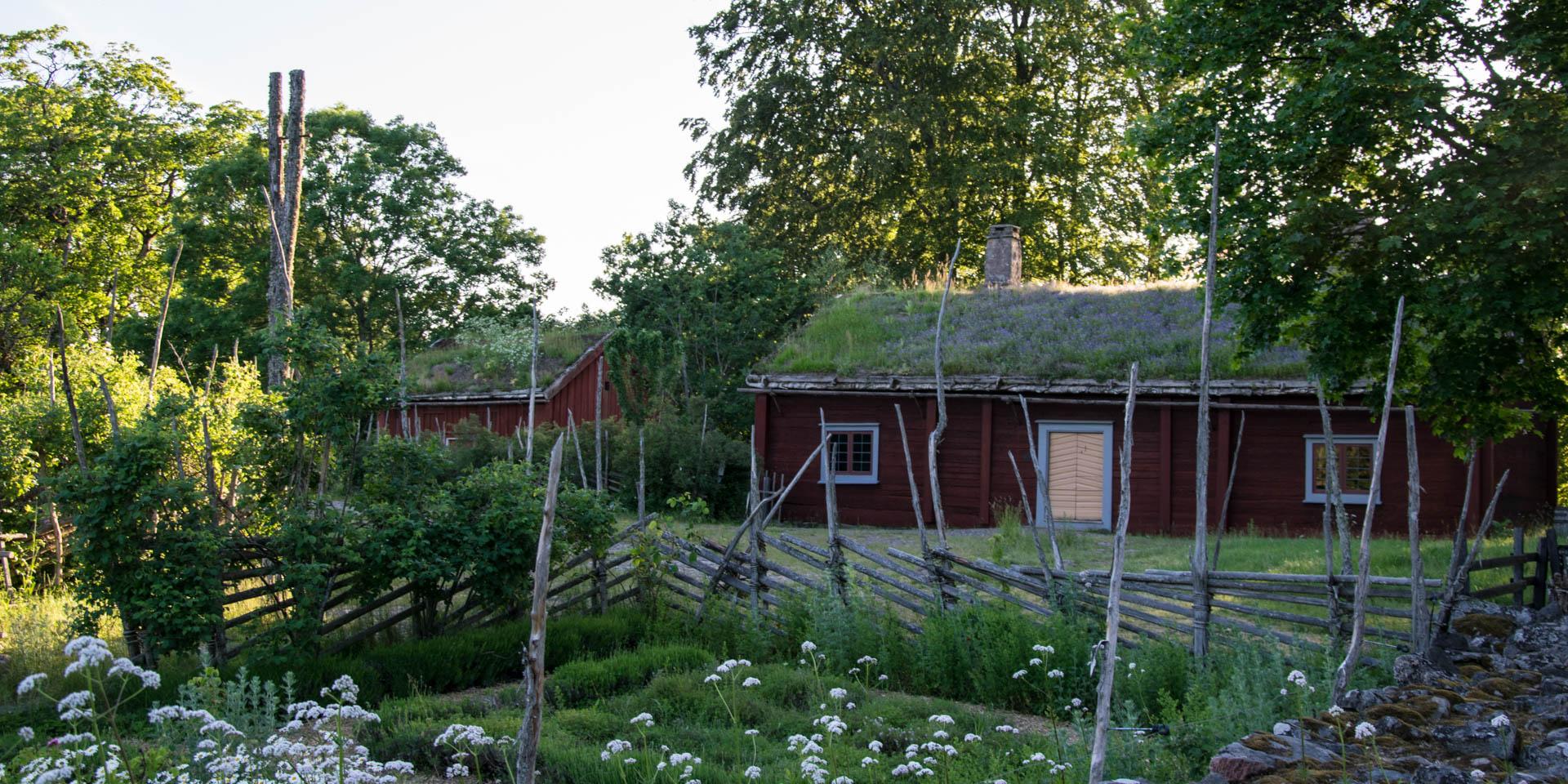 Linnés Råshult Kulturreservat 2019