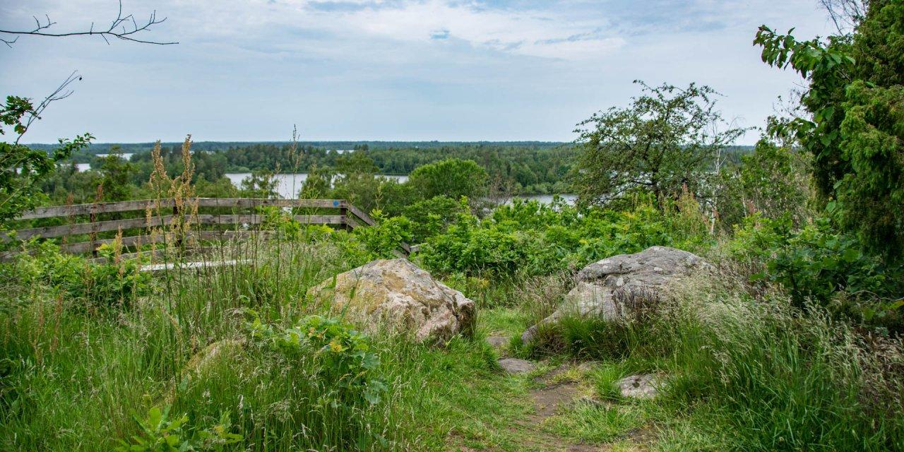 Taxås Naturreservat 2019