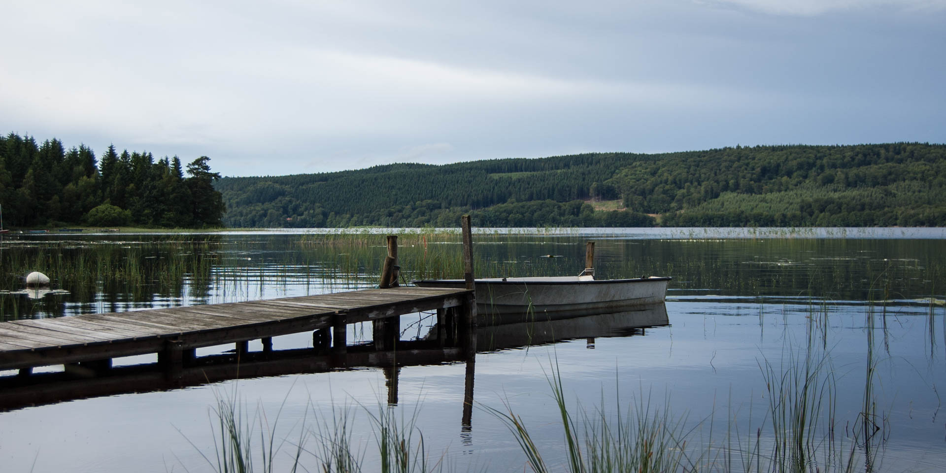 Västersjön 2015