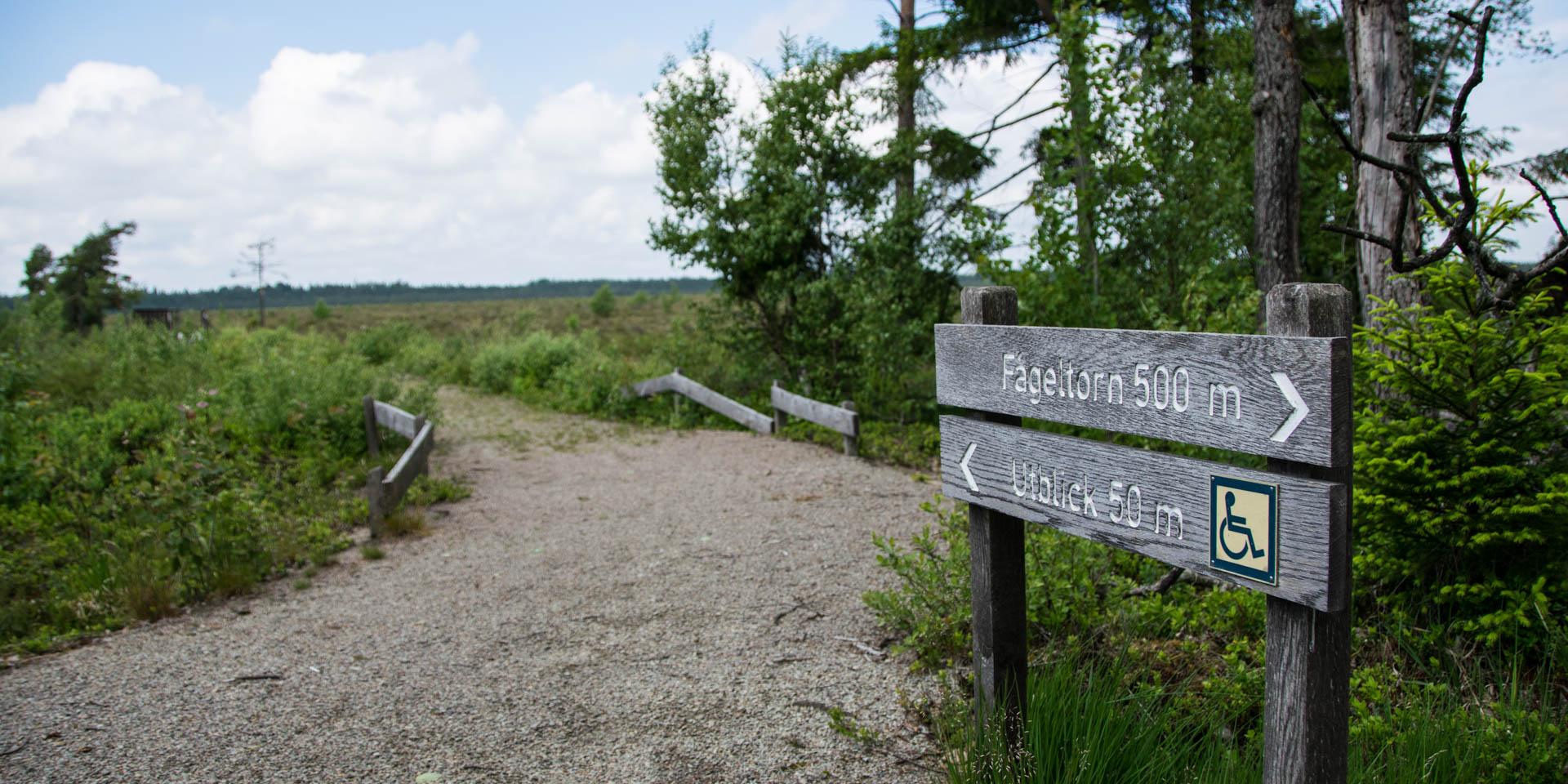 Taglamyrens Naturreservat 2019