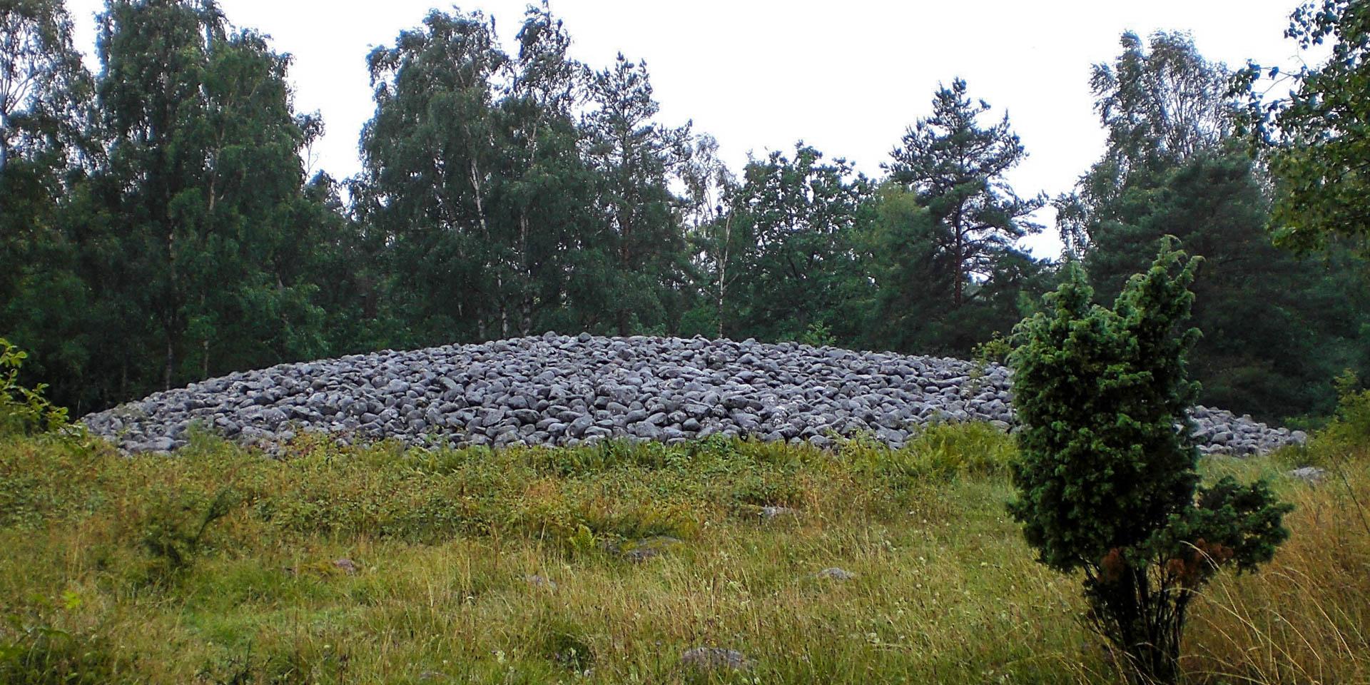Blå Rör 2008