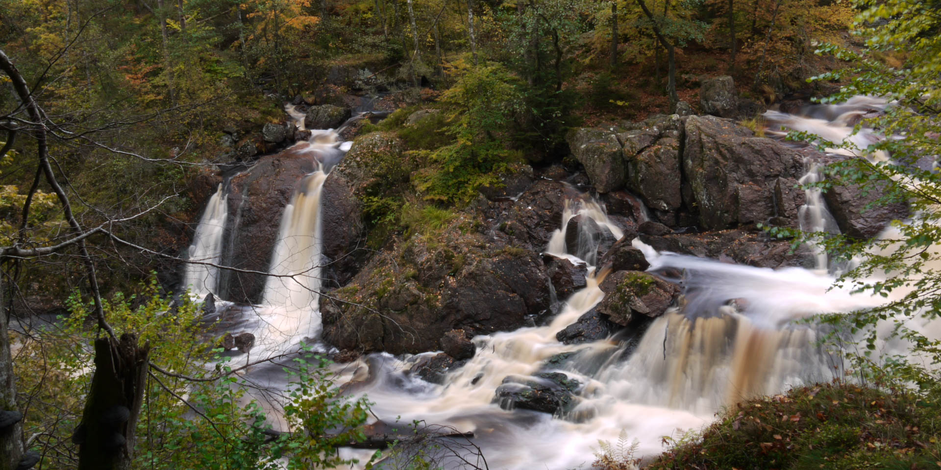 Danska Falls Naturreservat 2009