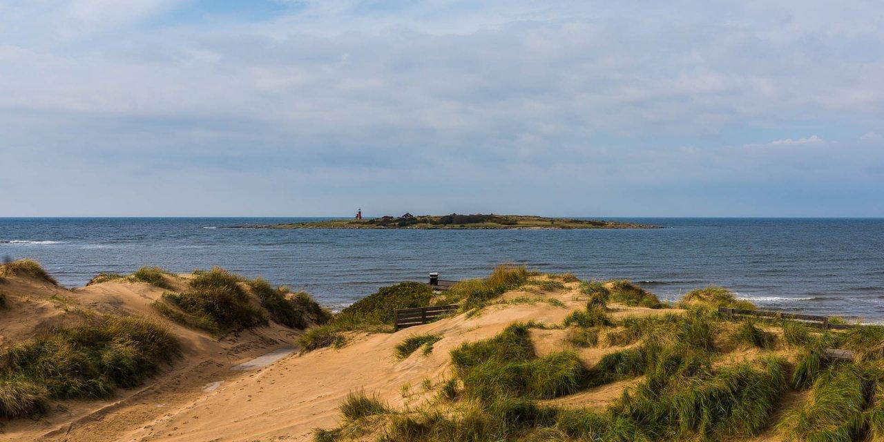 Tylöns Naturreservat 2014