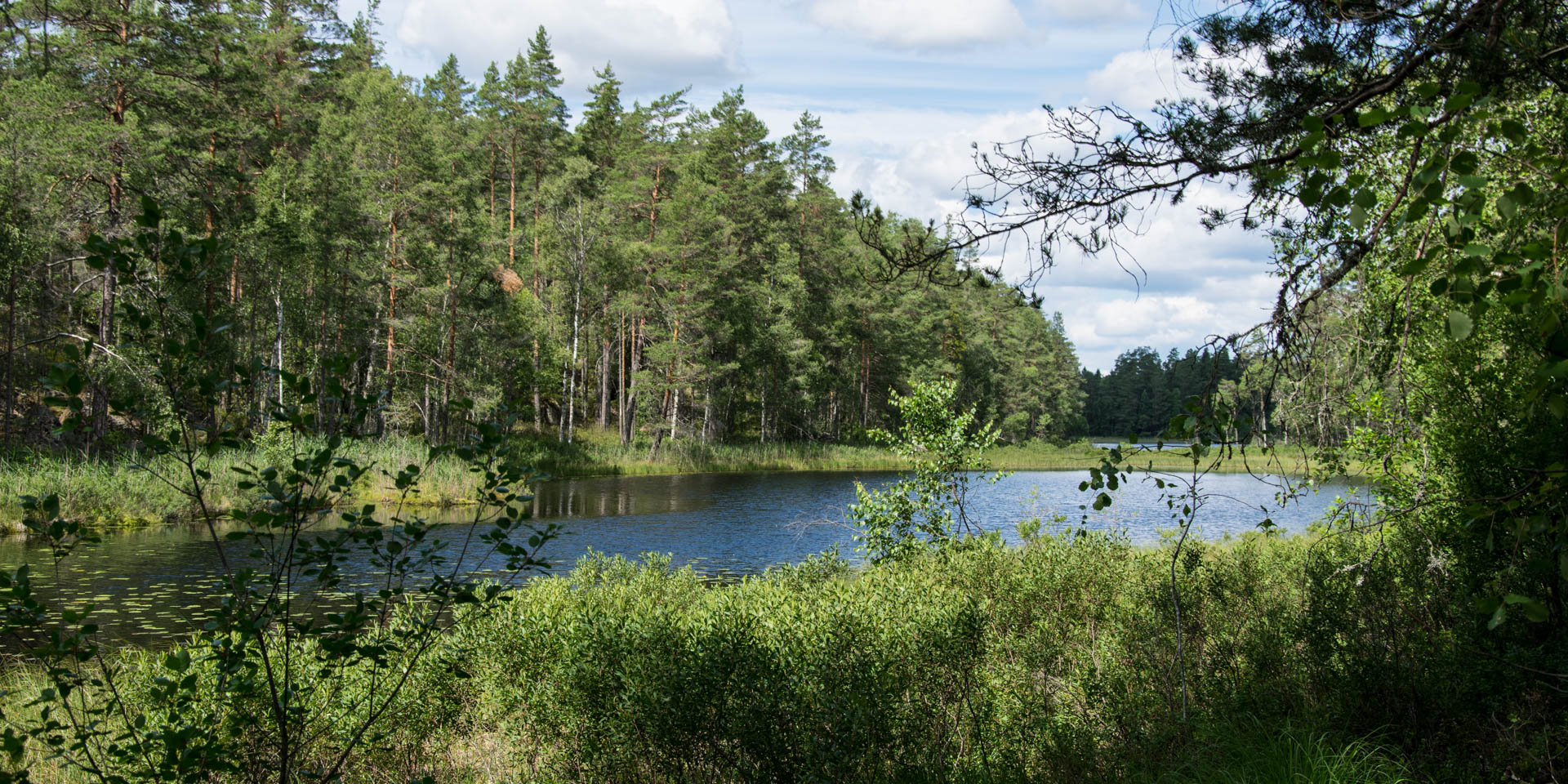 Björnnäsets Naturreservat 2017