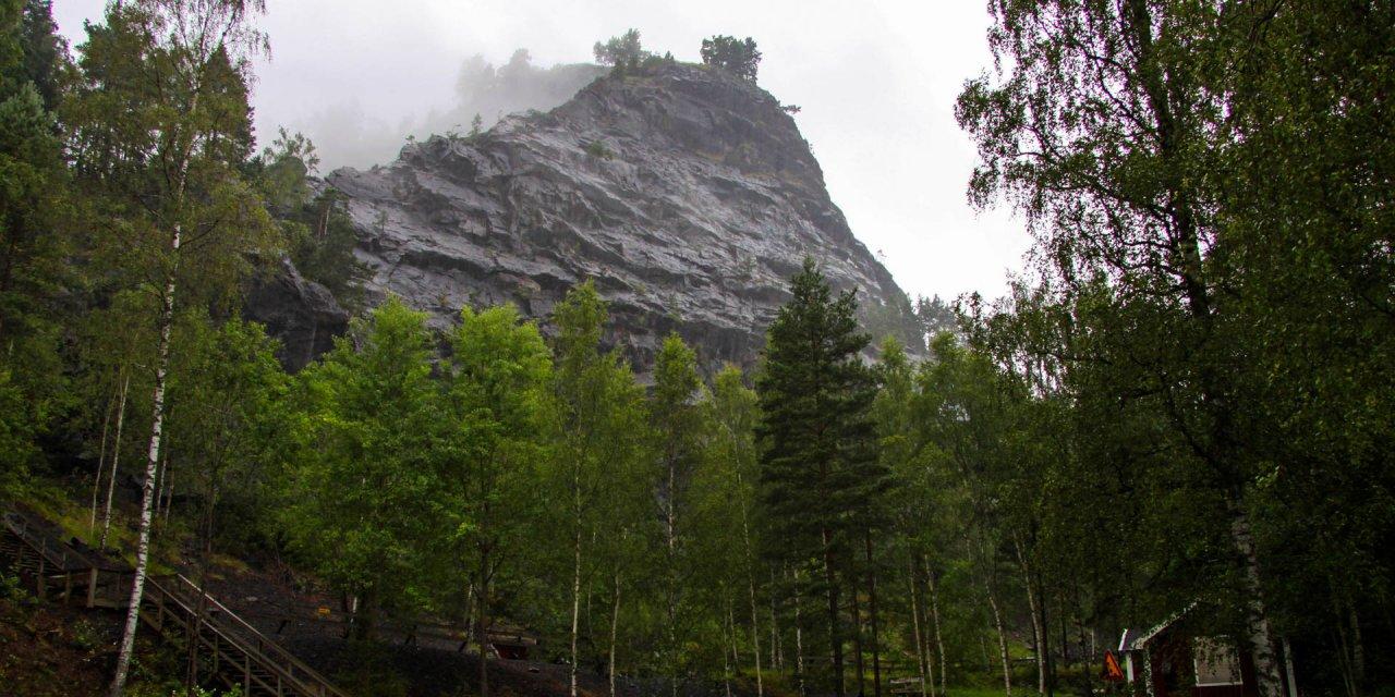 Tabergs Naturreservat 2012