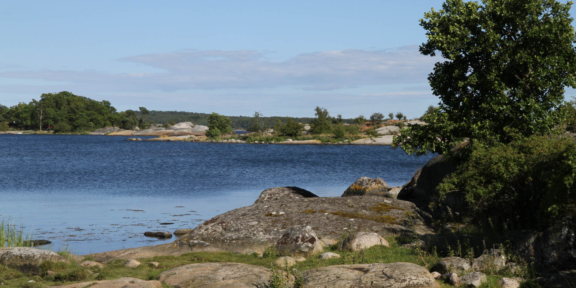 Stilleryds Naturreservat 2015
