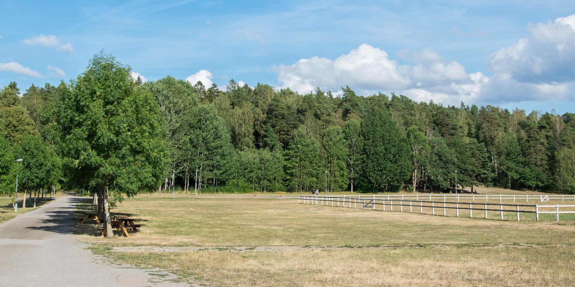 Vallaskogens Naturreservat 2018