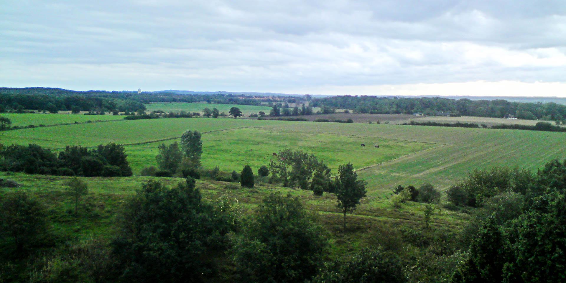 Billebjers Naturreservat 2008