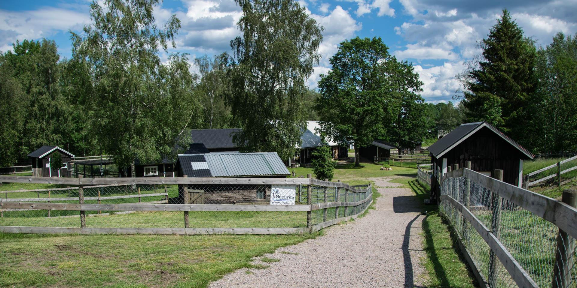 Djurparken Traryd-Skans 2019