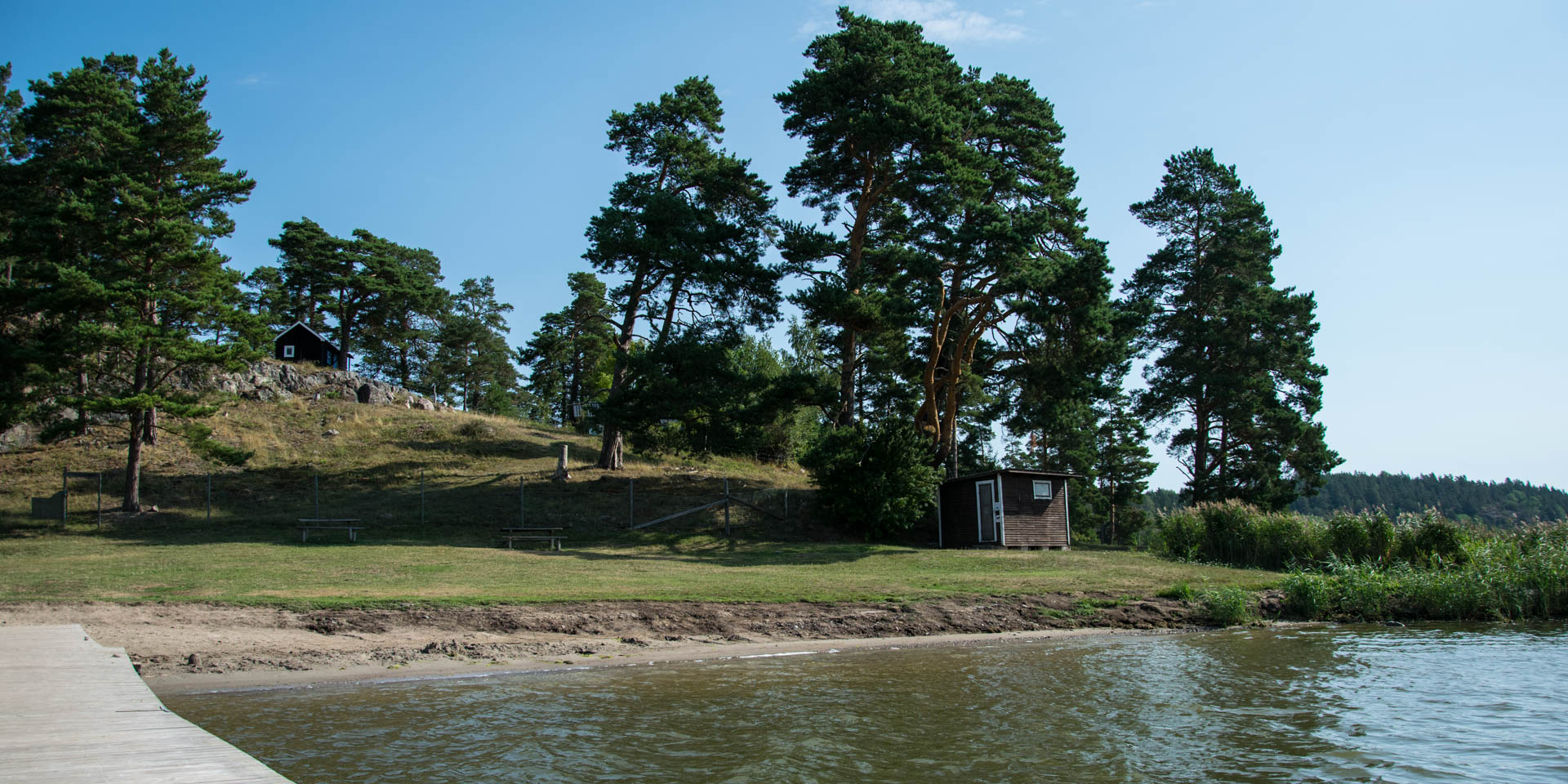 Dalbystrand 2018