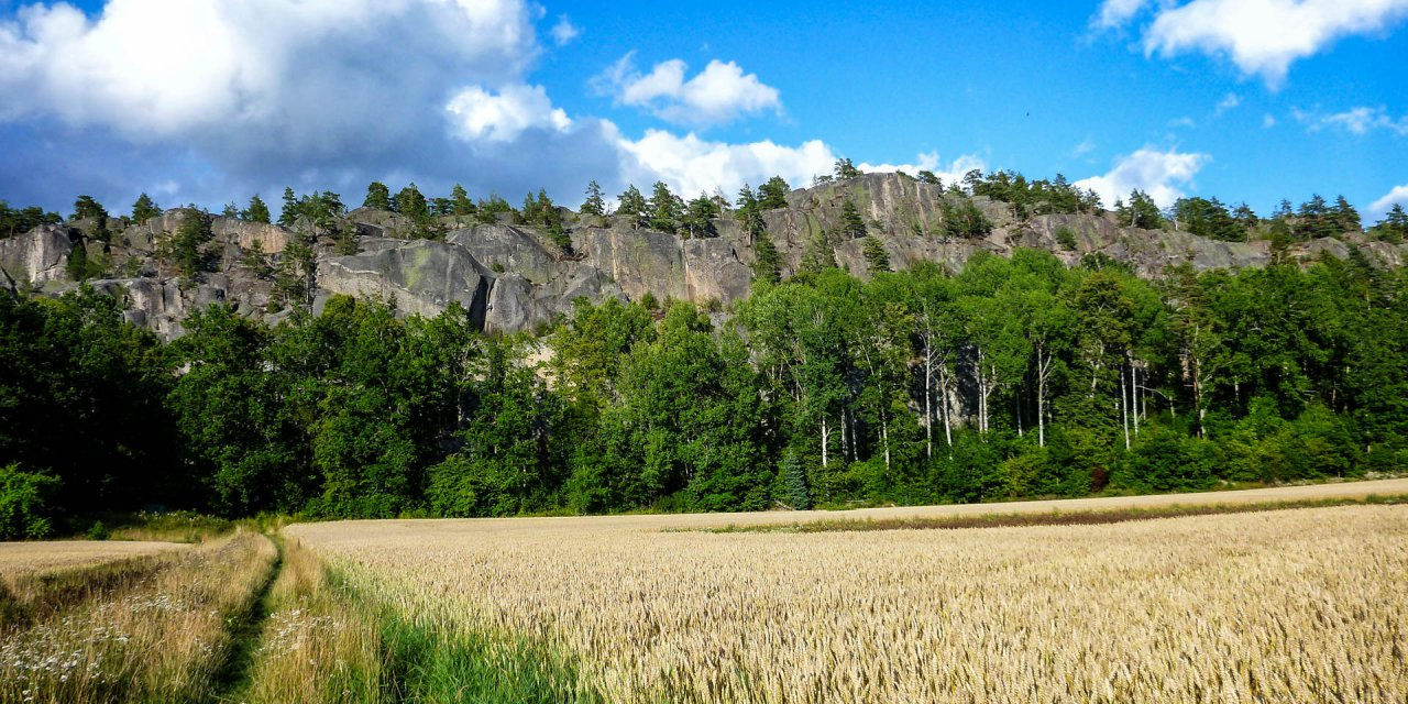 Simonbergets Naturreservat 2017