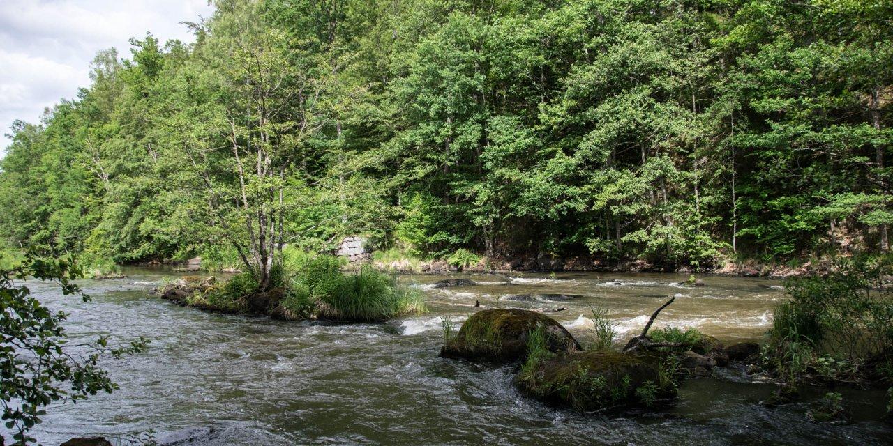 Käringahejans Naturreservat 2017