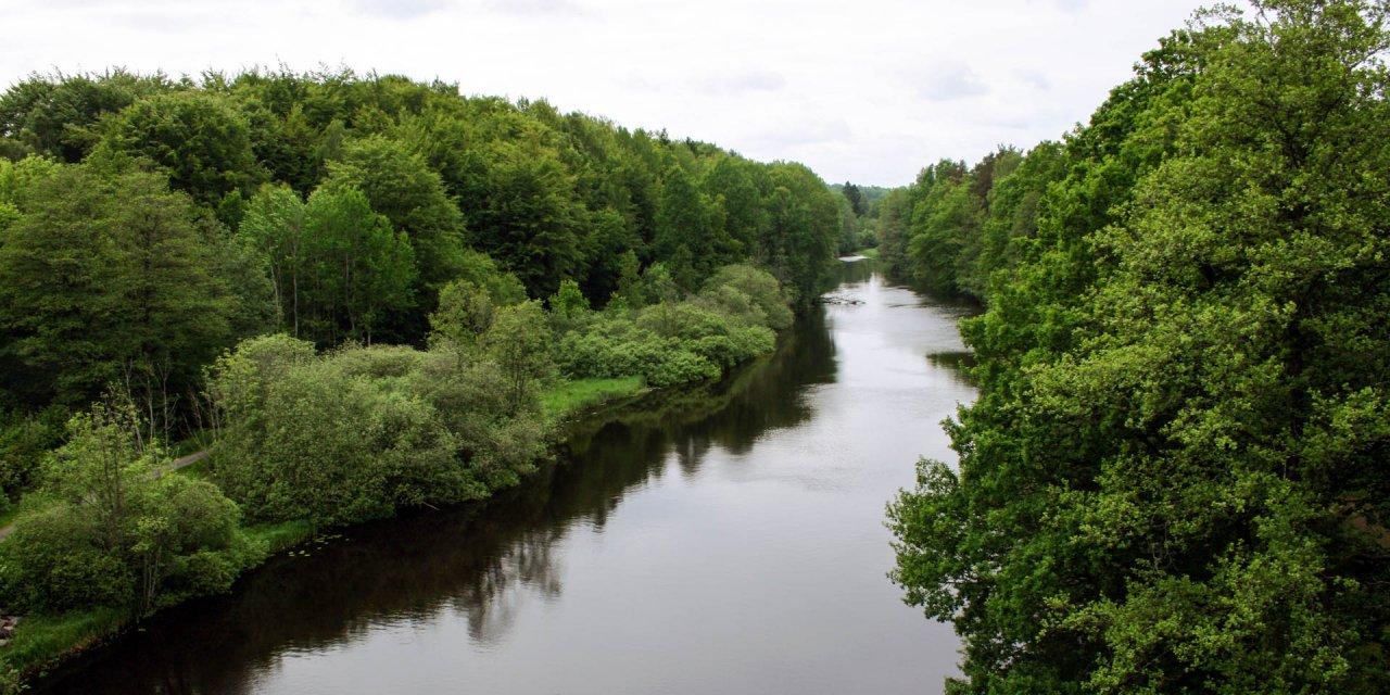 Mörrumsåns Dalgångs Naturreservat 2010
