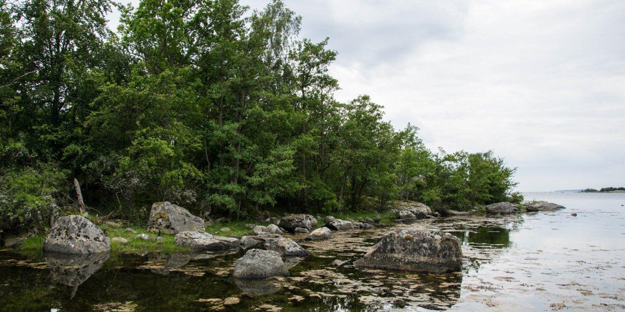Garnanäs Naturreservat 2017