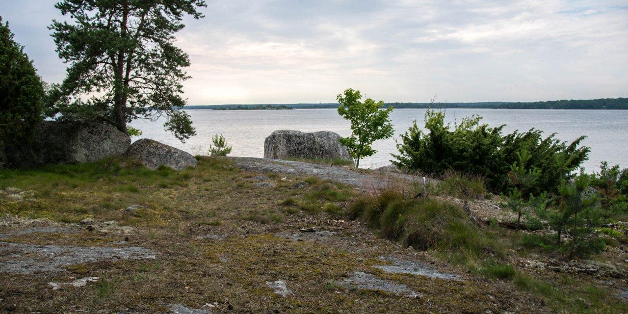 Gö Naturreservat 2017