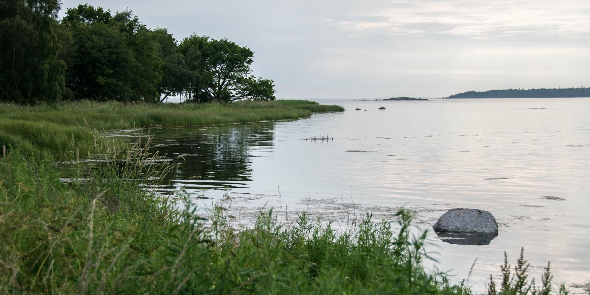 Lindö Udde Naturreservat 2017