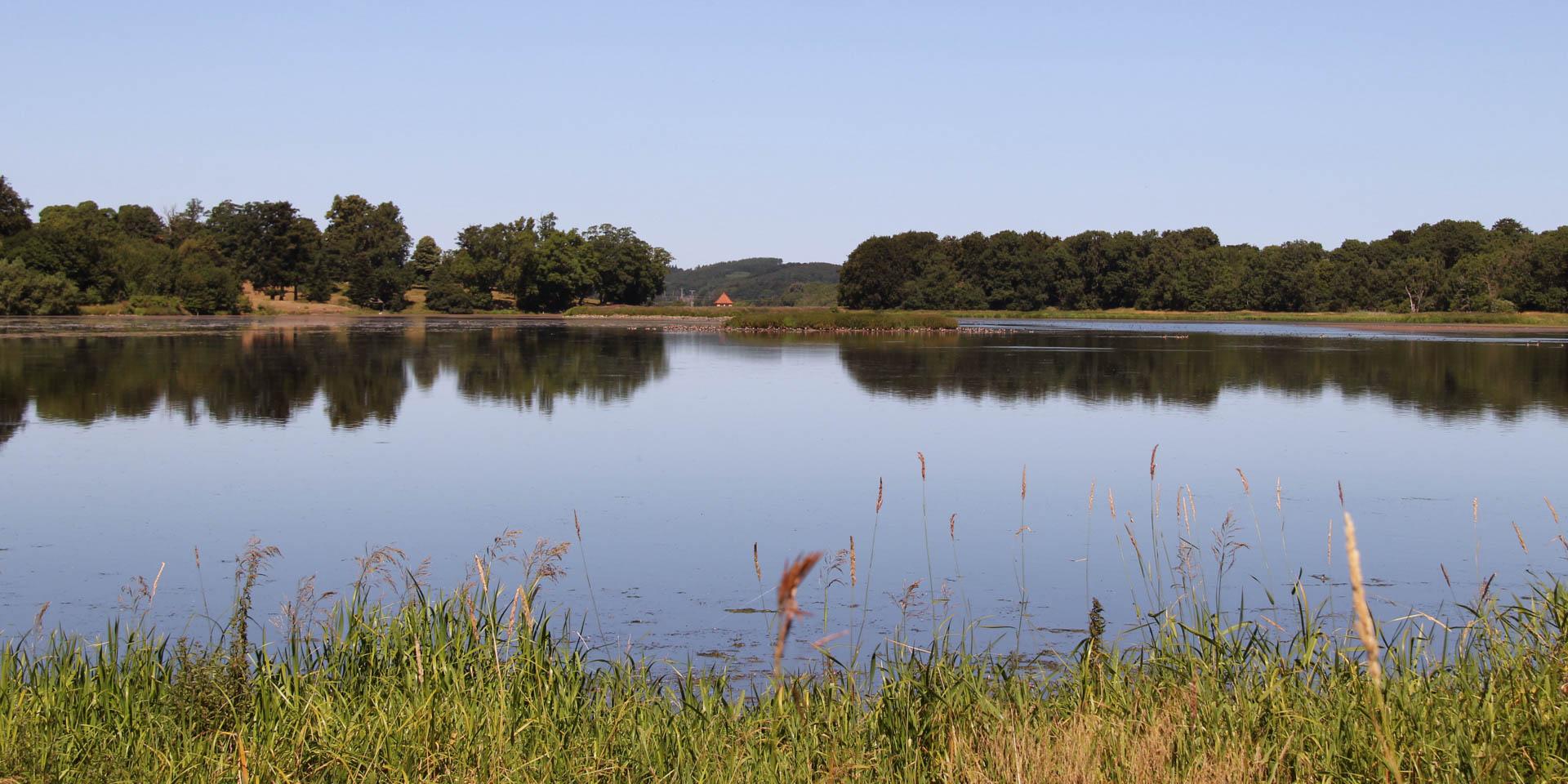 Näsbyholmssjön 2013