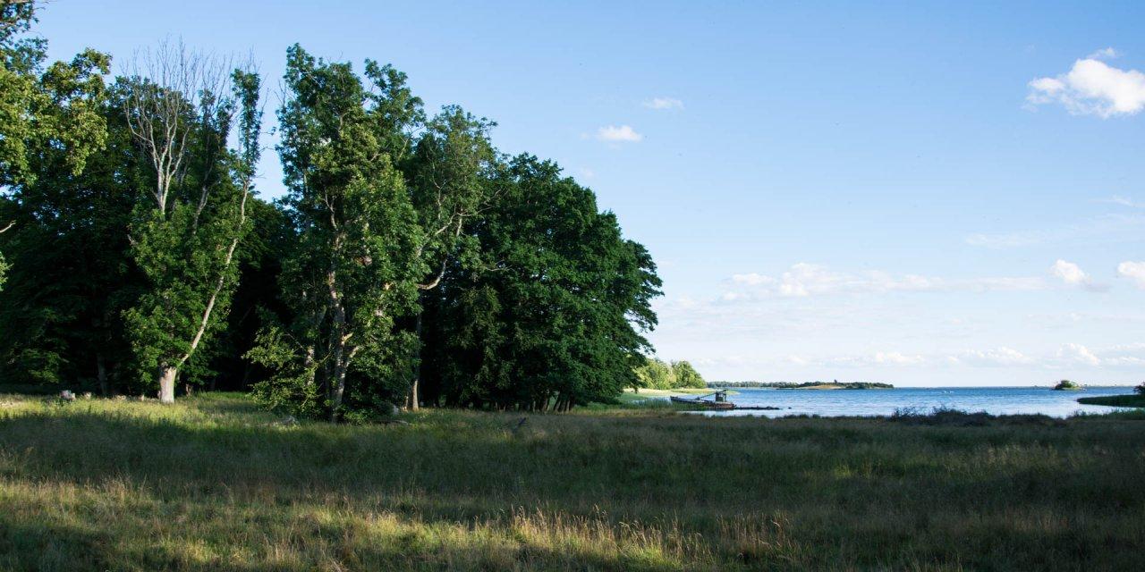 Valje Naturreservat 2016