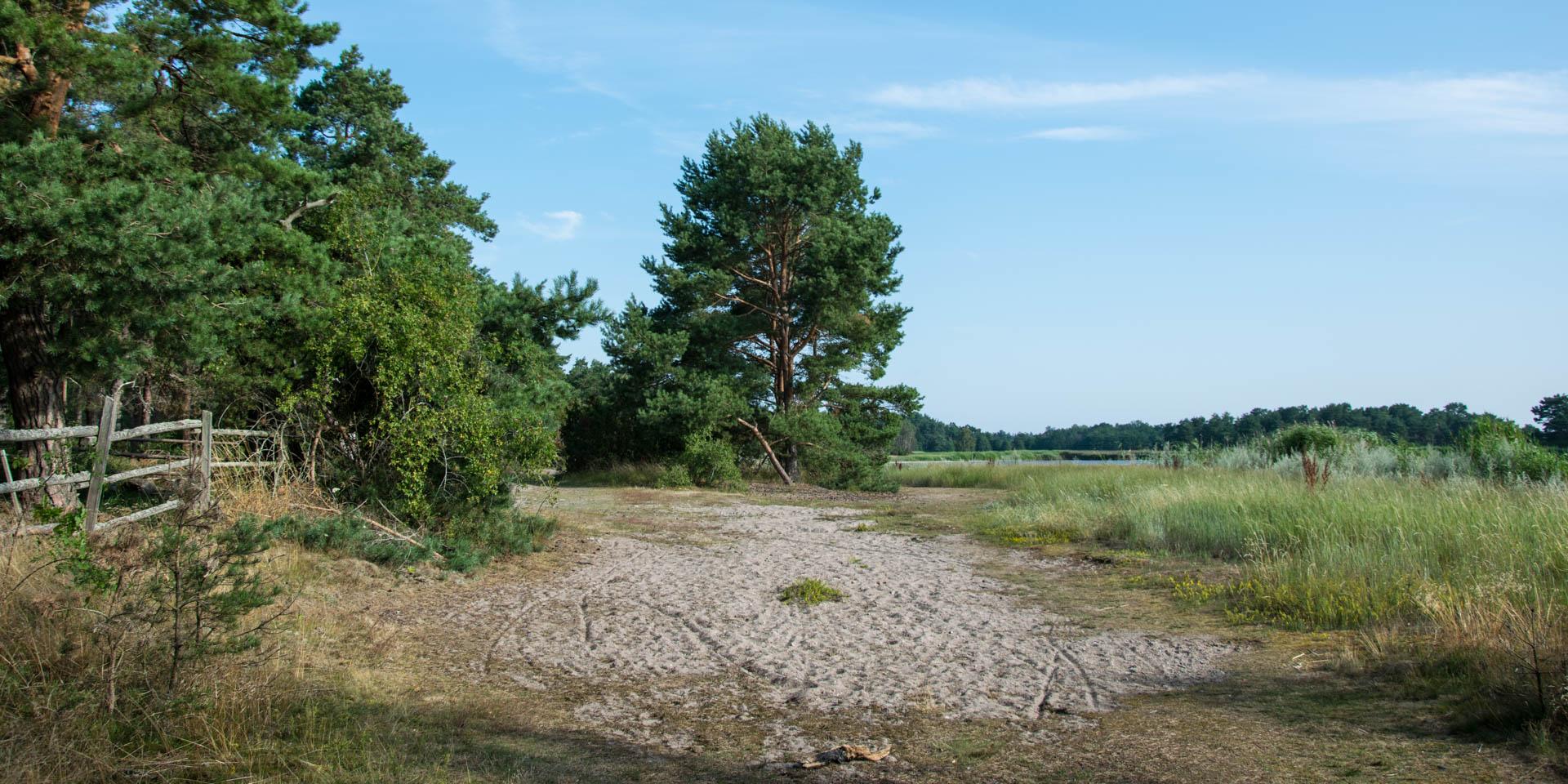 Örarevets Naturreservat 2019