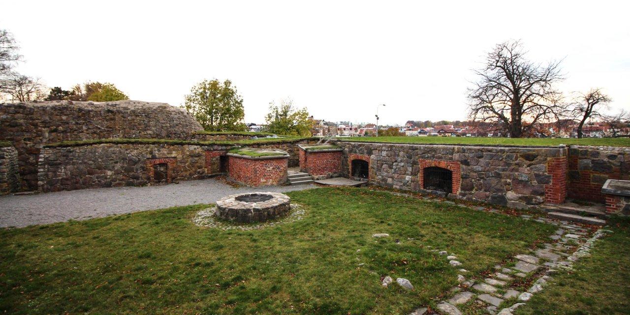 Stegeholms Slottsruin 2014