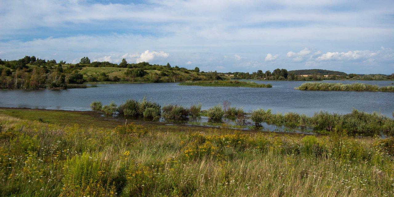 Arriesjön-Risebjärs Naturreservat 2011