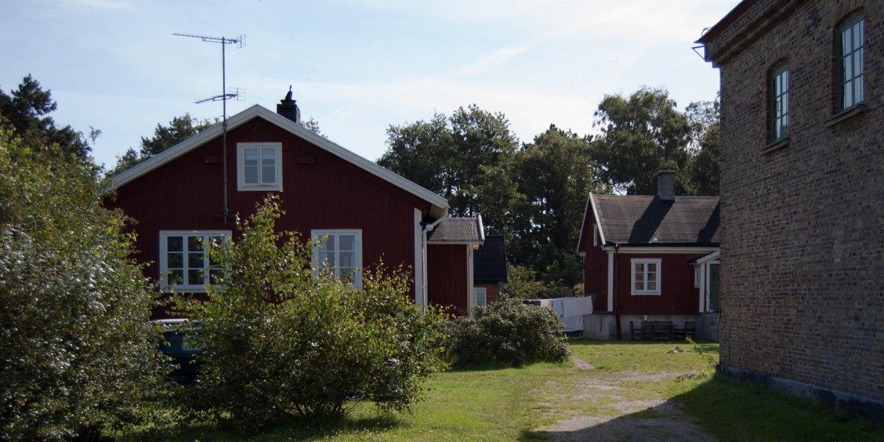Falsterbo Fågelstation 2011