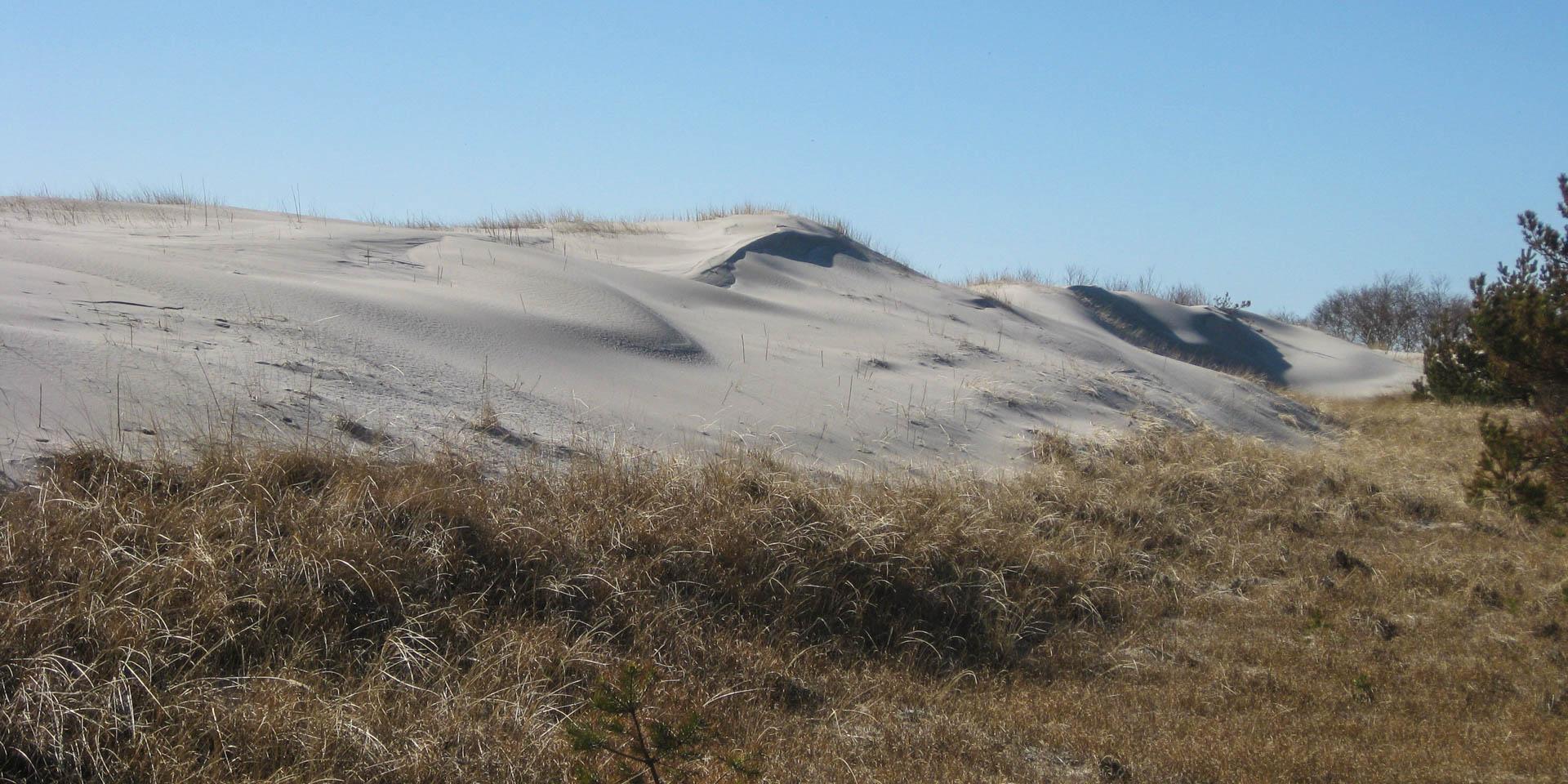 Hagestad Naturreservat 2012