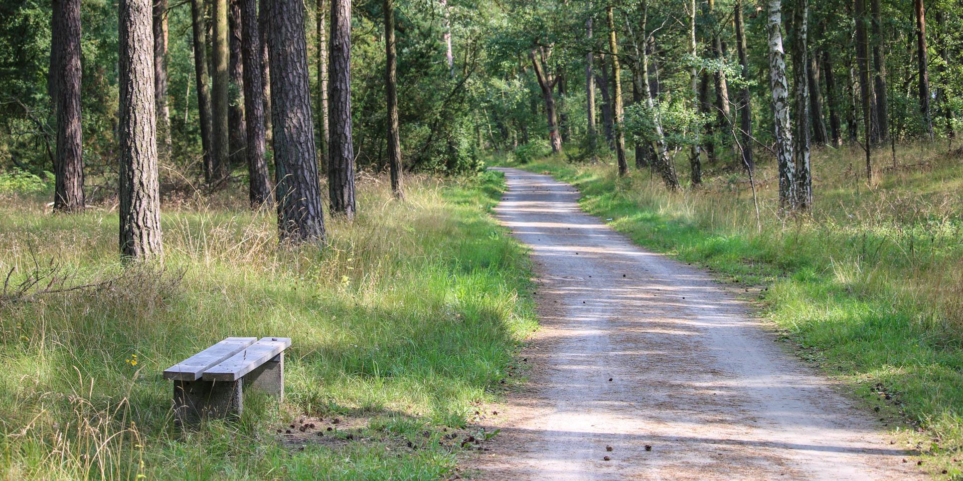 Ystads Sandskogs Naturreservat 2015